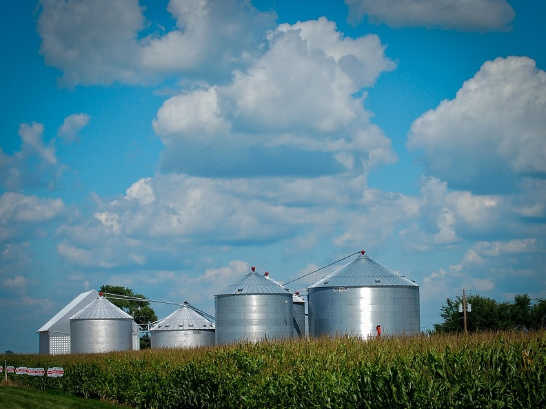 Corn and Barn and Silos.jpg